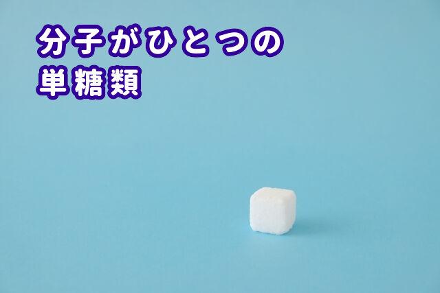 単糖類とは?