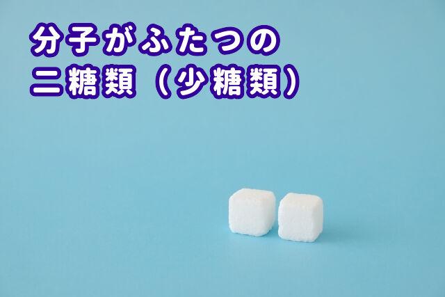 二糖類(少糖類)とは?
