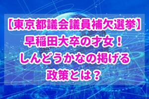 【東京都議会議員補欠選挙】早稲田大卒の才女!しんどうかなの掲げる政策とは?