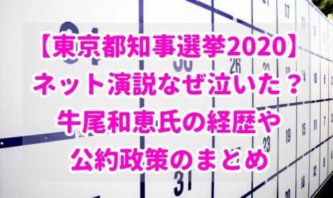 【東京都知事選挙2020】ネット演説なぜ泣いた?牛尾和恵氏の経歴や公約政策のまとめ