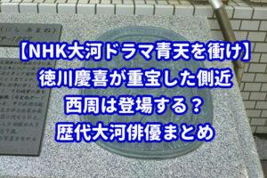 【NHK大河ドラマ青天を衝け】慶喜の側近・西周は登場する?歴代大河俳優まとめ