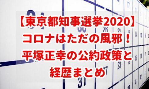 【東京都知事選挙2020】コロナはただの風邪!平塚正幸の公約政策と経歴まとめ