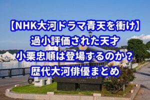 【NHK大河ドラマ青天を衝け】過小評価された天才・小栗忠順は登場するのか?歴代大河俳優まとめ