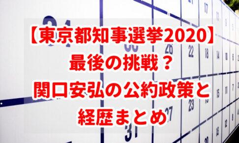【東京都知事選挙2020】最後の挑戦?関口安弘の公約政策と経歴まとめ