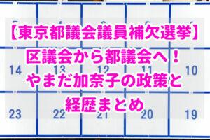 【東京都議会議員補欠選挙】区議会から都議会へ!やまだ加奈子の政策と経歴まとめ