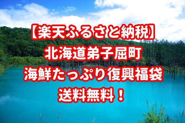 【楽天ふるさと納税】北海道弟子屈町の海鮮たっぷり復興福袋!送料無料