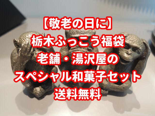 【敬老の日に】栃木ふっこう福袋!老舗湯沢屋のスペシャルセット|送料無料
