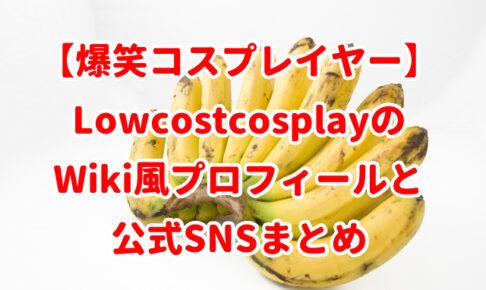 【爆笑コスプレイヤー】LowcostcosplayのWiki風プロフィールと公式SNSまとめ